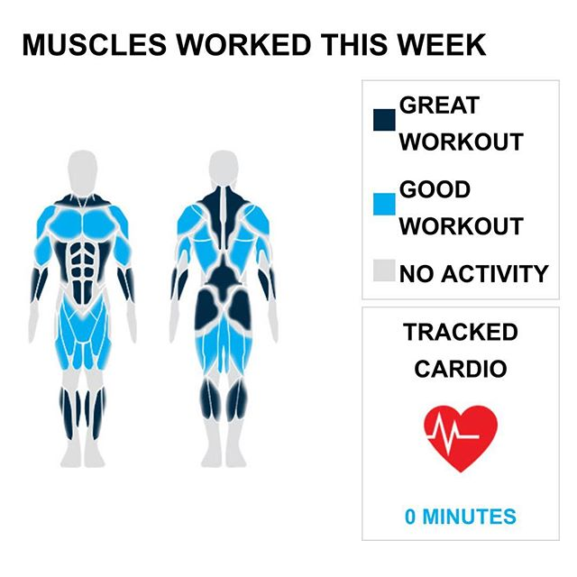 "Weekly Recap from bodybuilding.com for last week!  ABDOMINALS With two new personal records of 21 exercises and 53 sets, you had an awesome ab week. Weighted sit-ups - with bands was your leading lift, with an average of 15 lbs. per set. However, due to your great workout distribution, it only made up 15 of your 53 sets.  CHEST You typically average three chest exercises, but this week you said, ""forget that,"" and did an outstanding six exercises. It wasn't the top priority, but you still managed a solid chest week, which made up 13% of your overall workout. Barbell bench press - medium grip was virtually all of your chest exercises. You did 18 sets in total and averaged 110 lbs. per set. Word!  TRAPS You just kept turning out trap exercises and sets this week. Six exercises and 15 sets are both new personal highs. With a total of nine sets, barbell shrug made up over half of your trap workout. In addition, you averaged 148 lbs. per set. Hell yeah.  NOTES: * Nice work on the new personal record. You did a total of six tricep exercises this week. * You hit a personal best with five calf exercises throughout the week. * It's not every week you set a new PR, so give yourself a pat on the back. You completed six trap exercises. * You had an awesome trap week. Your new personal best is 15 sets.  #workinprogress"
