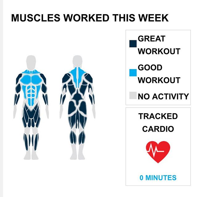 Weekly Recap from bodybuilding.com for last week!  SHOULDERS With five shoulder exercises this week, you did over 50% more than your weekly average. Props! You did a total of 13 sets too. Upright barbell row was your best lift, with an average of 56 lbs. per set. However, due to your great workout distribution, it only made up four of your 13 sets.  TRICEPS You cranked out a solid tricep week. You did five exercises this week, and 15% of your workouts included your triceps. Bench dips was your top tricep lift, and you did it for four of your 18 sets. I BICEPS Dude, you just kept going with your biceps, totaling five exercises. Barbell curl was your best bicep lift. You did four sets and averaged 25 lbs. per set.  NOTES: * Your biceps just keep growing with your average barbell curl weight going from 13 lbs. to 25 lbs. in the last month. * That's what it's all about. Your 11 middle back sets from this week beat your three-month weekly average. * Whatever you've been up to lately has been awesome. Your quad strength has increased dramatically. * Way to pick it up. Your performance this week was greater than your three month weekly average with three quad exercises.  #workinprogress
