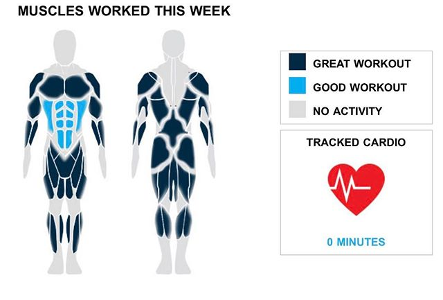Weekly Recap from bodybuilding.com for last week!  ABDOMINALS With 30 ab sets this week, you did over 50% more than your weekly average. Props! 37% of your week's workouts involved your abs. Your primary lift from the week was plank, which only made up 10 of your 30 sets.  CHEST It was a down week for your chest. You only did two exercises and eight sets. With a total of five sets, barbell bench press - medium grip was over half of your chest sets. In those sets, you managed to average an impressive 60 lbs. per set!  QUADRICEPS It was just more exercises on top of more exercises on top of more exercises, and after it was all said and done, you did three quad exercises. They were 18% of your weekly workout. 10 sets of barbell full squat made up over half of your quad workout. In addition, you averaged 30 lbs. per set. Oh yeah.  NOTES: * In just a year you've managed to go from lifting 50 lbs. per set of standing military press to a whopping 58. * You did 15 quad sets this week. Compared to your three-month average, you dominated it. * Your six ab exercises from this week are greater than your three-month average. Nice work! * Let's get at it. You fell short of last week's total of two middle back exercises, only hitting one this week.  #workinprogress