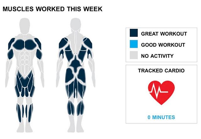 Weekly Recap from bodybuilding.com for last week!  QUADRICEPS With three quad exercises this week, you did 50% more than your weekly average. Good work! You did a total of 15 sets too. The bulk of your quad workout came from 10 sets of barbell full squat you did. You were a monster during the lift, averaging 13 lbs. per set.  CHEST Two exercises and 10 sets is a solid chest week; way to go. It wasn't the top priority, but you still managed a solid chest week, with 24% of your workout involving the muscle group. The lone chest lift you did was barbell bench press - medium grip, although you did average an awesome 53 lbs. per set.  MIDDLE BACK Your middle back must be sore after this week's workouts. Your two exercises were much higher than normal, while you also did 10 sets. Bent over barbell row was your lone middle back lift, but you did crush the exercise, lifting an average of 78 lbs. per set.  NOTES: * Remember when you were lifting 36 lbs. per set when doing standing military press? Well now, a year later, you are doing 50 lbs. per set! * Way to get after it. Your 10 chest sets from this week are better than your three-month weekly average. * Your three quad exercises from this week are greater than your three-month average. Good job! * You averaged 15 lbs. per set with your quads this week, above your three-month average. Whoa, you killed it.