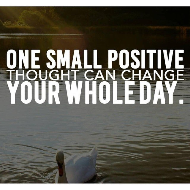 Day 26: Daily Motivation (TGIF) Sometimes the smallest things make a big difference. Always look for the positive. 