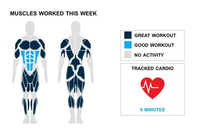 """Weekly Recap from bodybuilding.com for last week!  ABDOMINALS Like Arnold has always said, """"""""pain is temporary, pride is forever."""""""" After your amazing week you must be feeling very prideful. You totaled 15 ab sets over three exercises. Your leading lift from the week was crunches, which accounted for 10 of your 15 sets.  BICEPS Way to put that extra effort into your biceps. Your five sets and one exercise accounted for 7% of your overall workout. In those five sets, which were all sets of hammer curls, you averaged an impressive 40 lbs. per set.  SHOULDERS Keep pushing yourself after another great week. You lifted your shoulders in a total of five sets, which was 7% of your workouts. Arnold dumbbell press was your lone shoulder lift, but you did crush the exercise, lifting an average of 25 lbs. per set.  NOTES: * You've officially put your hamstrings on the fast track to serious strength gains. Over just the last month your barbell deadlift went from 155 lbs. to 175 lbs. * In just a year you've managed to graduate from lifting 65 lbs. per set of bent over barbell row to a whopping 95. * With 15 ab sets, you did more than your three-month average of nine. Way to get after it, buddy. * The last few weeks of hamstring work have begun to pay dividends with your strength increasing quickly. Nice work!   #workinprogress"""